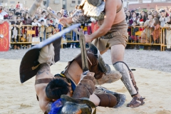 lucha gladiadores.jpg